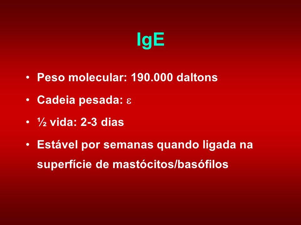 IgE Peso molecular: 190.000 daltons Cadeia pesada:  ½ vida: 2-3 dias