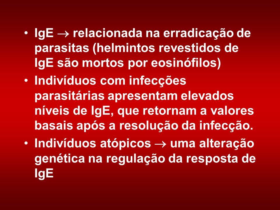 IgE  relacionada na erradicação de parasitas (helmintos revestidos de IgE são mortos por eosinófilos)