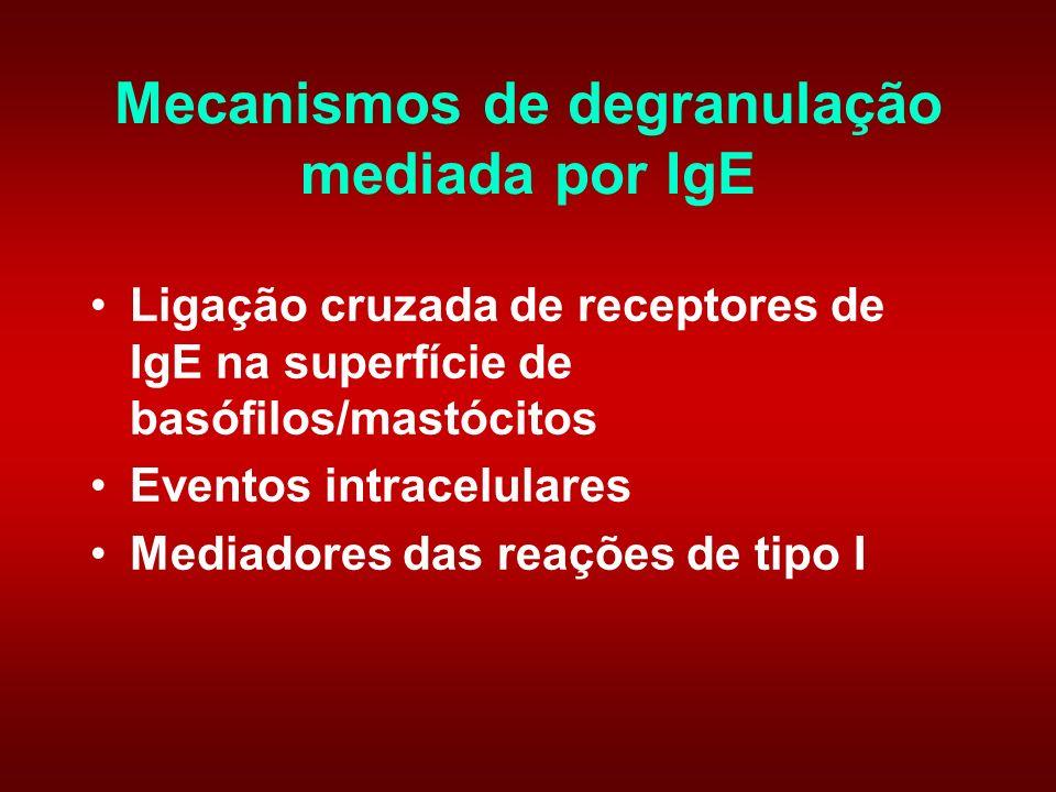 Mecanismos de degranulação mediada por IgE