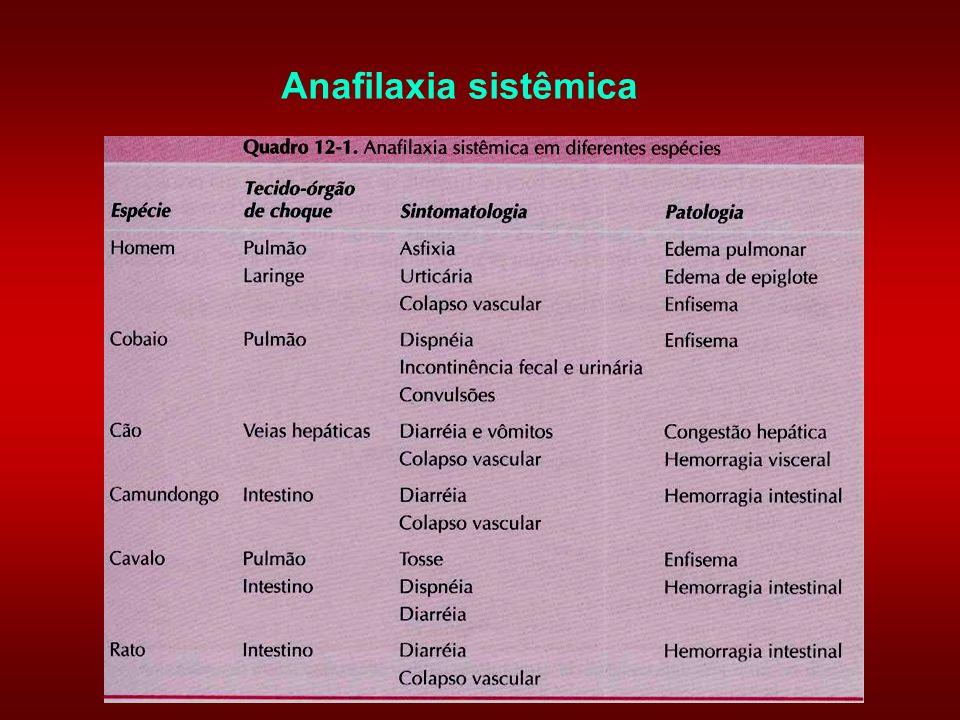 Anafilaxia sistêmica