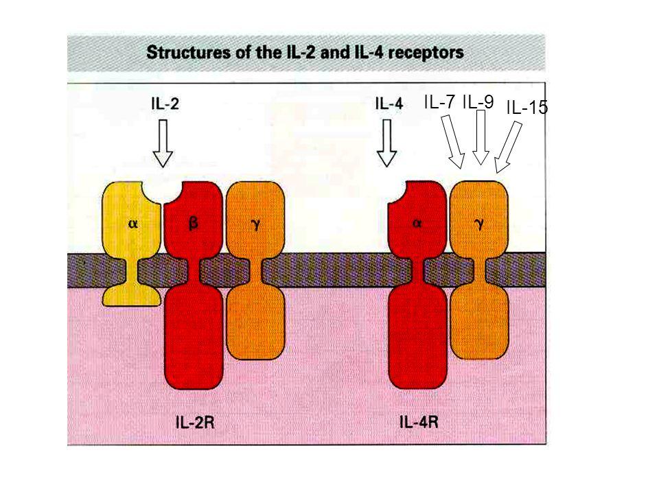 IL-7 IL-9 IL-15