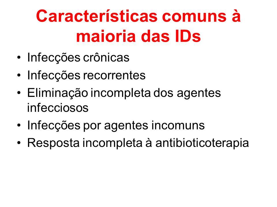 Características comuns à maioria das IDs
