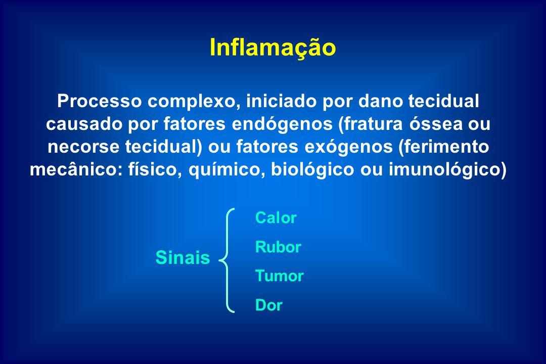 Inflamação