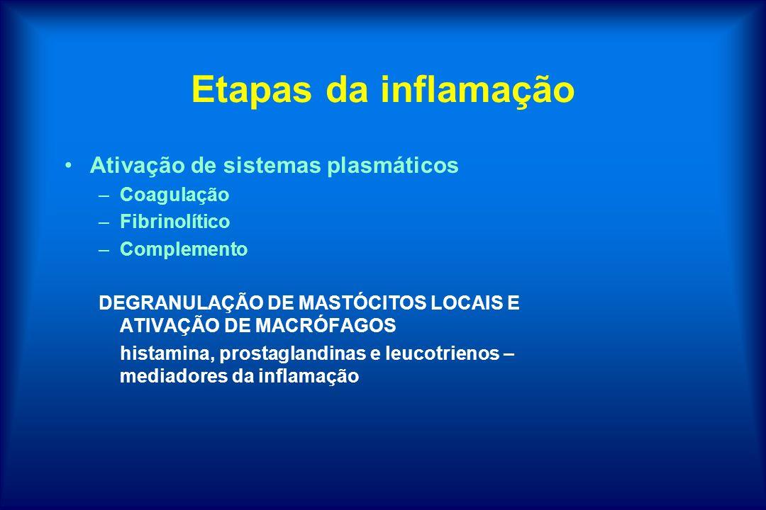 Etapas da inflamação Ativação de sistemas plasmáticos Coagulação