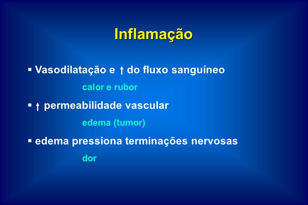 Inflamação Vasodilatação e do fluxo sanguíneo permeabilidade vascular