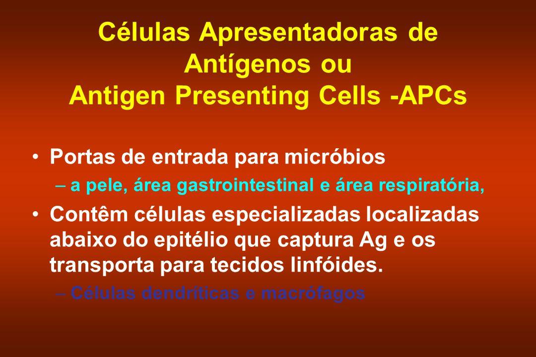 Células Apresentadoras de Antígenos ou Antigen Presenting Cells -APCs