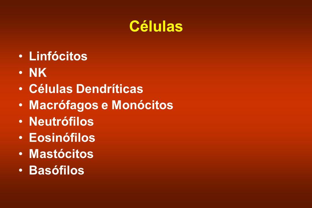 Células Linfócitos NK Células Dendríticas Macrófagos e Monócitos