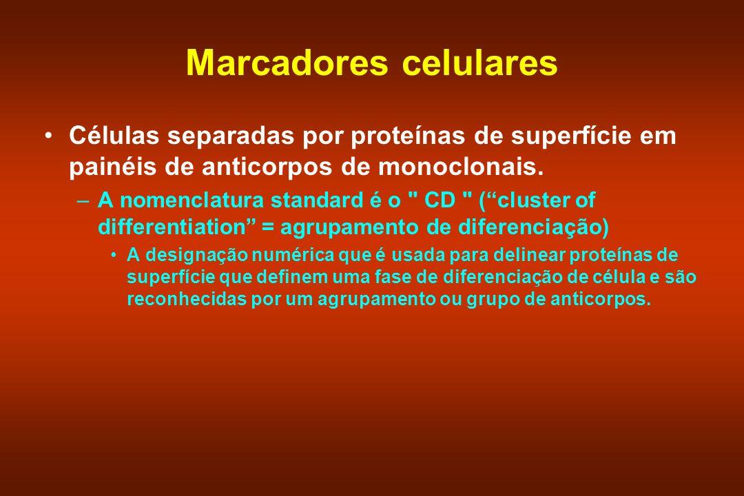 Marcadores celulares Células separadas por proteínas de superfície em painéis de anticorpos de monoclonais.