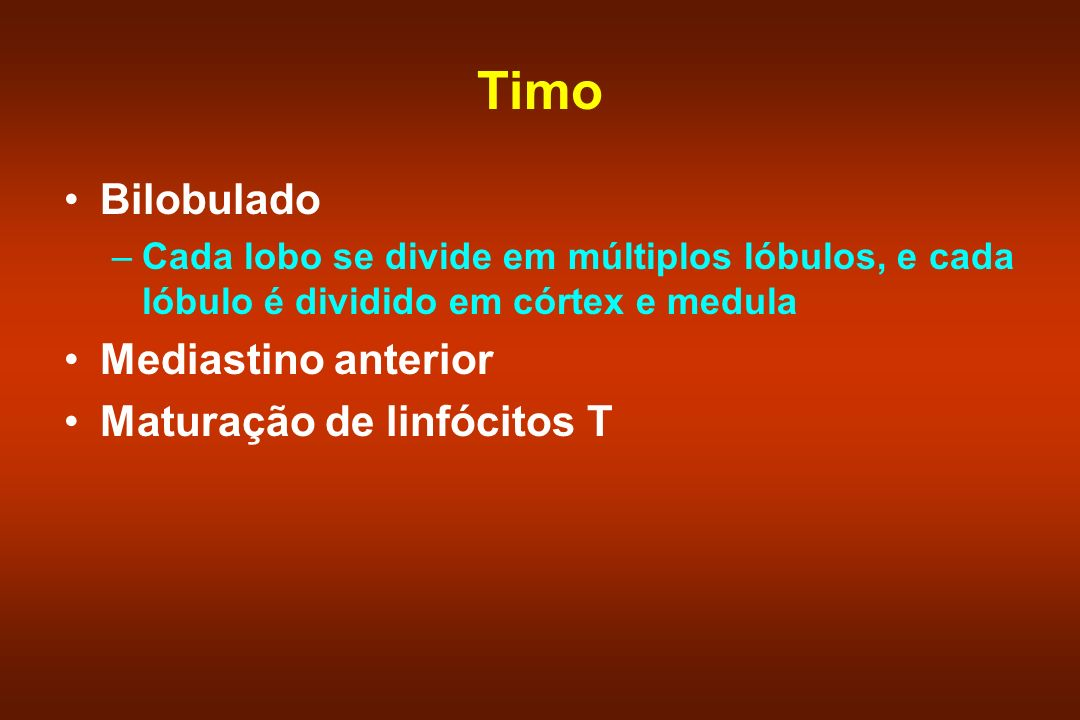 Timo Bilobulado Mediastino anterior Maturação de linfócitos T