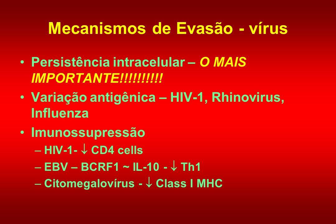 Mecanismos de Evasão - vírus