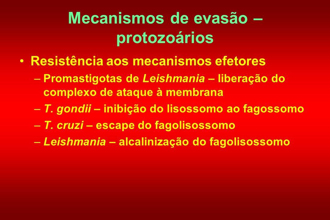 Mecanismos de evasão – protozoários