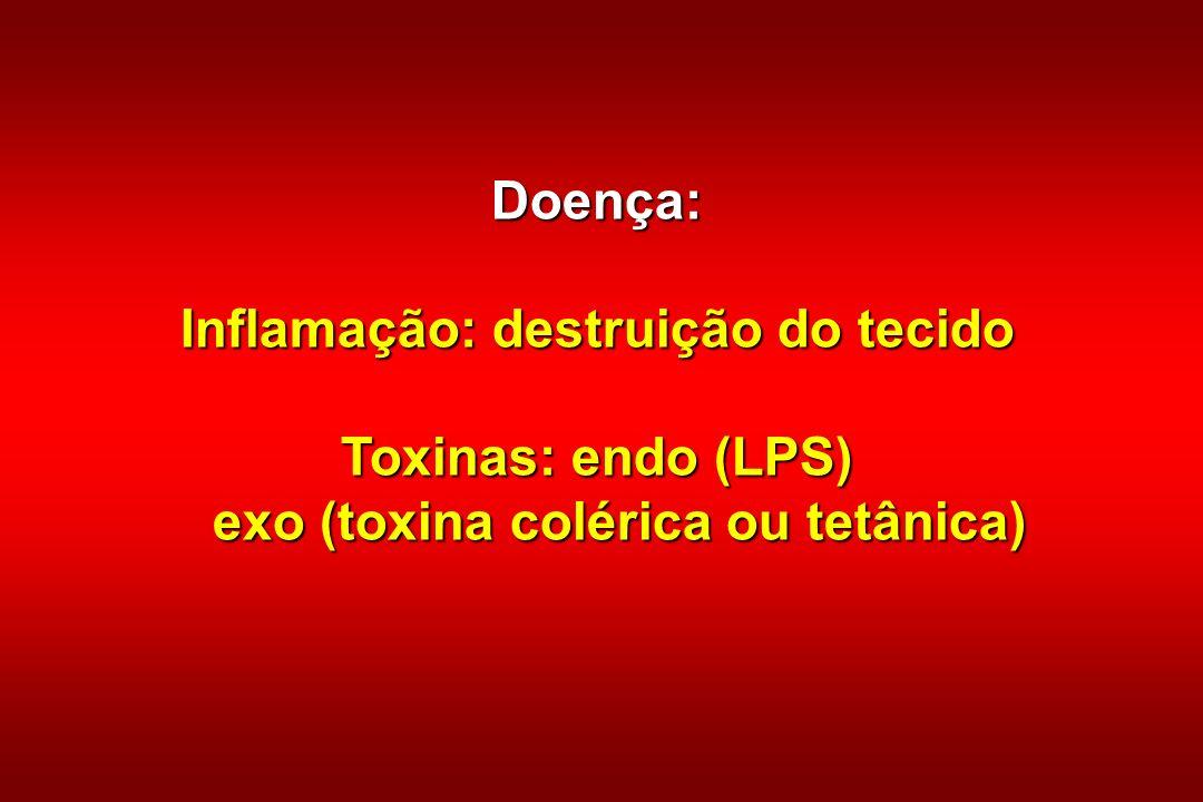 Inflamação: destruição do tecido exo (toxina colérica ou tetânica)