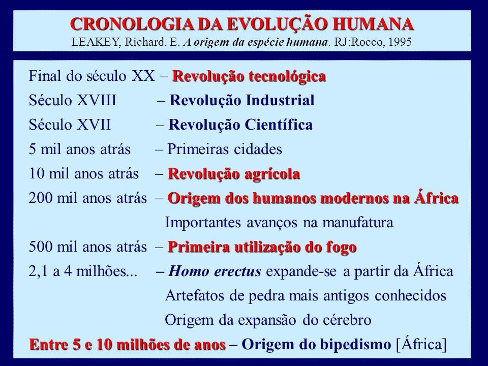 CRONOLOGIA DA EVOLUÇÃO HUMANA CRONOLOGIA DA EVOLUÇÃO HUMANA