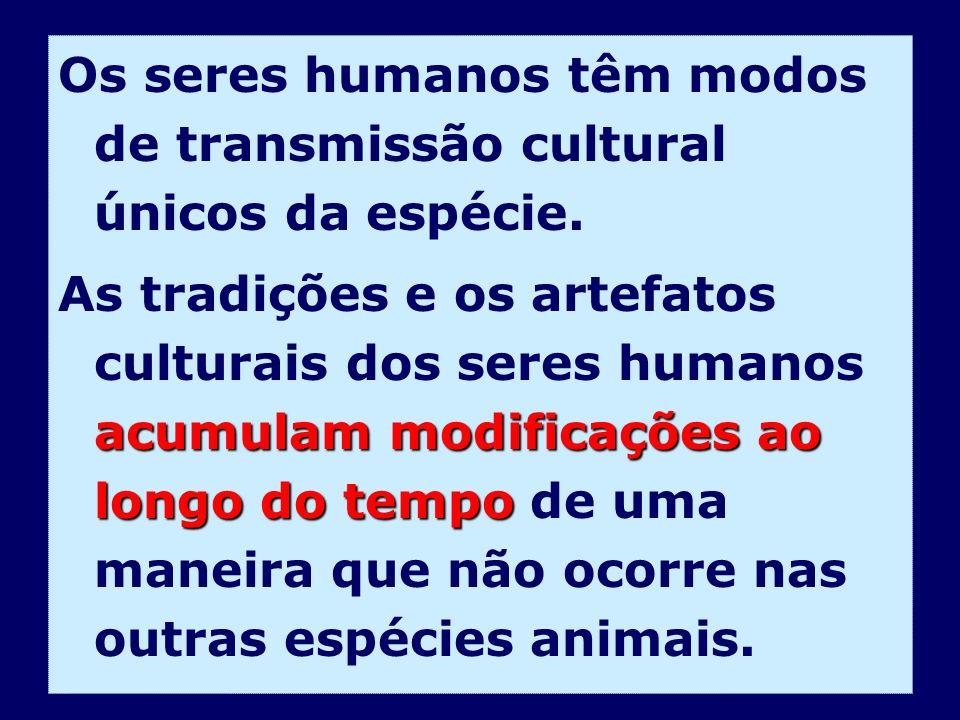 Os seres humanos têm modos de transmissão cultural únicos da espécie.