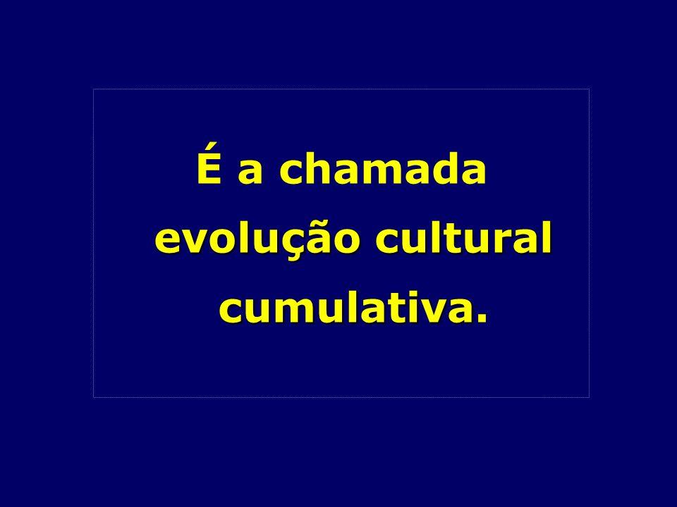 É a chamada evolução cultural cumulativa.
