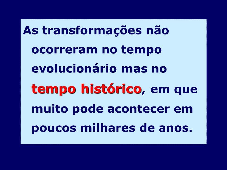 As transformações não ocorreram no tempo evolucionário mas no tempo histórico, em que muito pode acontecer em poucos milhares de anos.