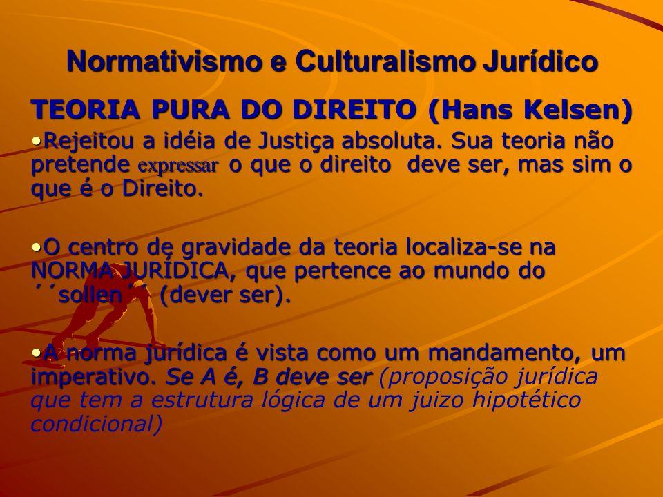 Normativismo e Culturalismo Jurídico
