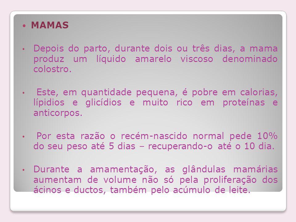 MAMASDepois do parto, durante dois ou três dias, a mama produz um líquido amarelo viscoso denominado colostro.