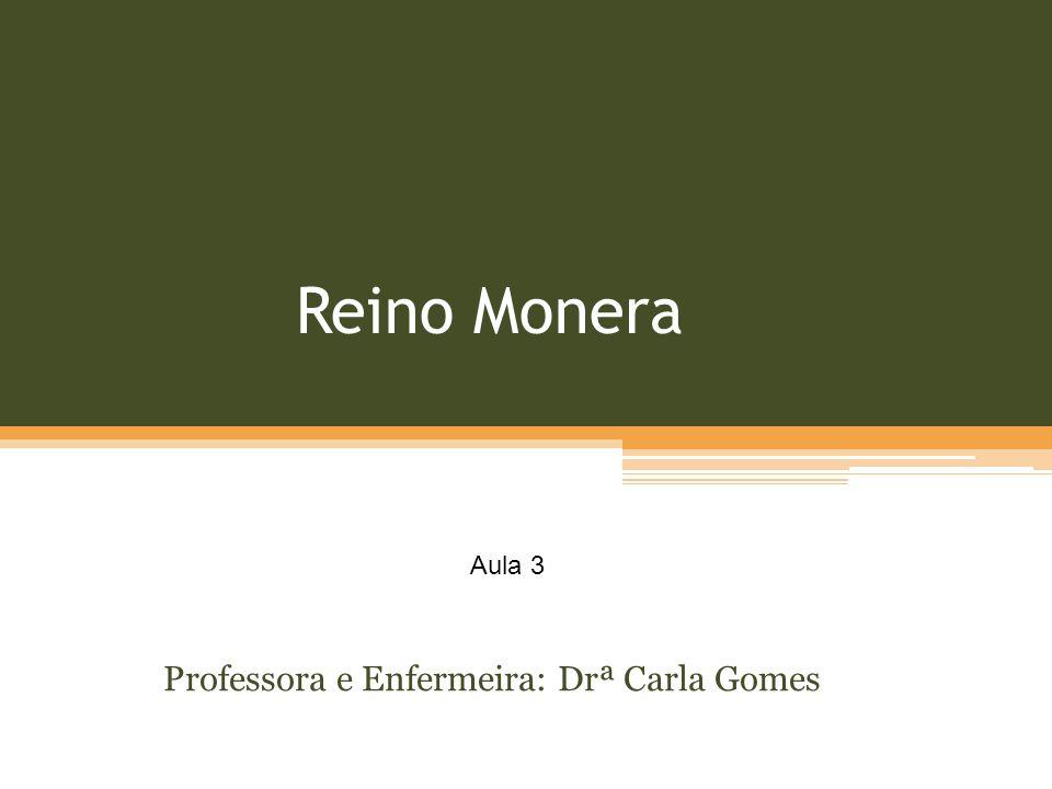 Professora e Enfermeira: Drª Carla Gomes
