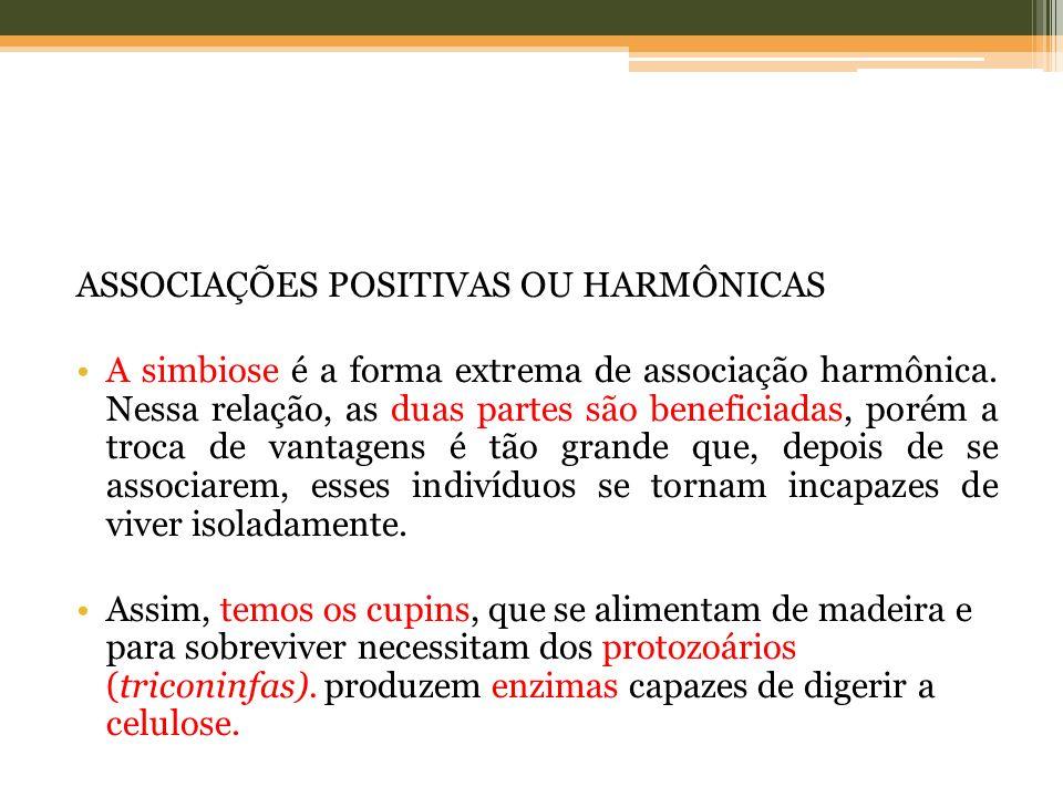 ASSOCIAÇÕES POSITIVAS OU HARMÔNICAS