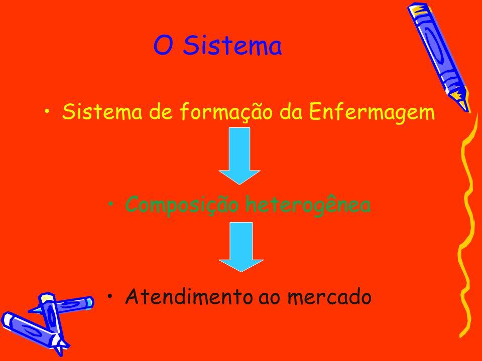 O Sistema Sistema de formação da Enfermagem Composição heterogênea