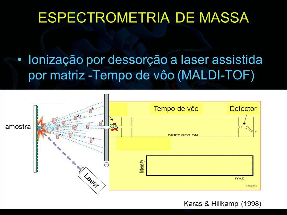 ESPECTROMETRIA DE MASSA