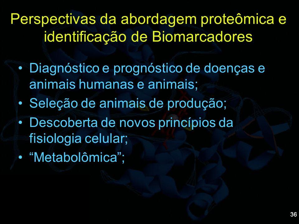 Perspectivas da abordagem proteômica e identificação de Biomarcadores