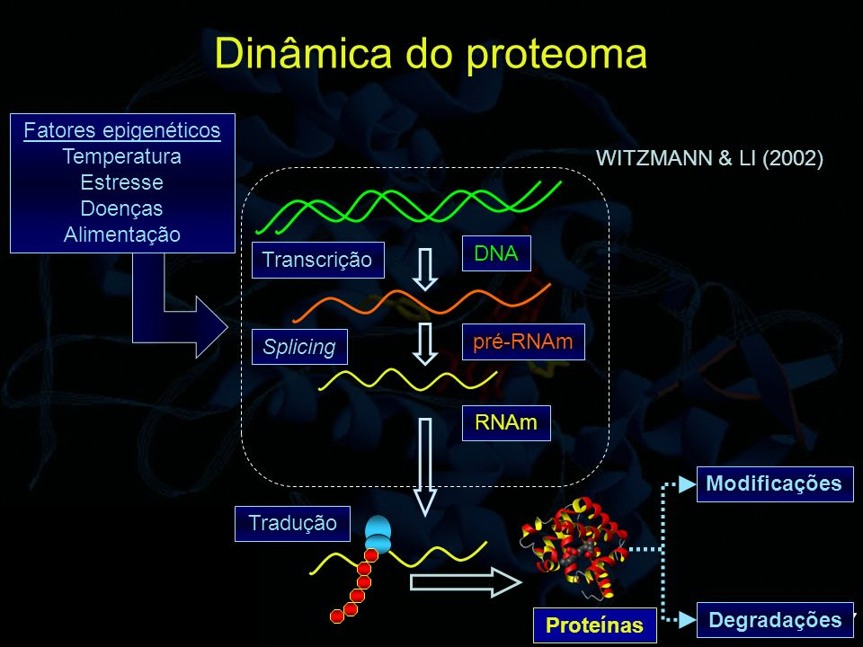 Dinâmica do proteoma Fatores epigenéticos Temperatura Estresse