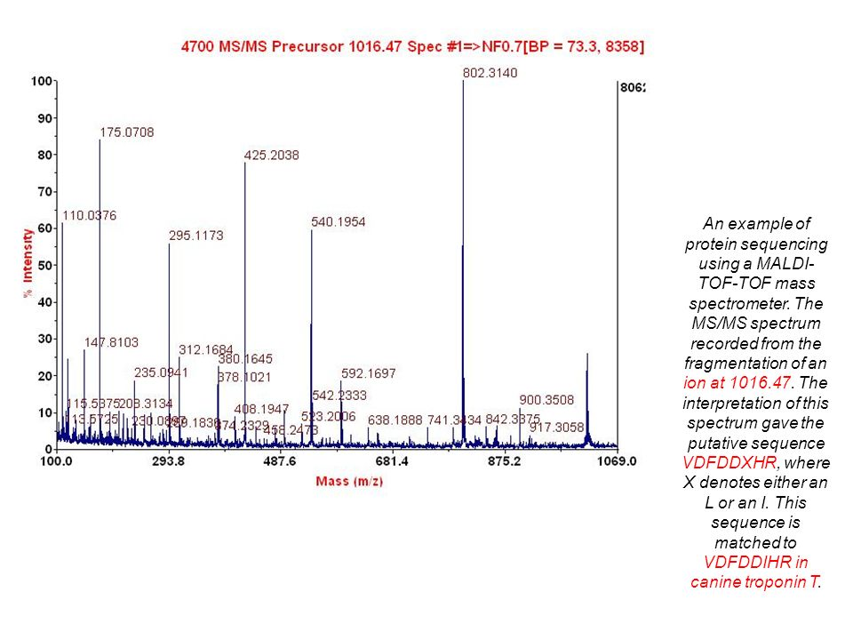 An example of protein sequencing using a MALDI-TOF-TOF mass spectrometer.