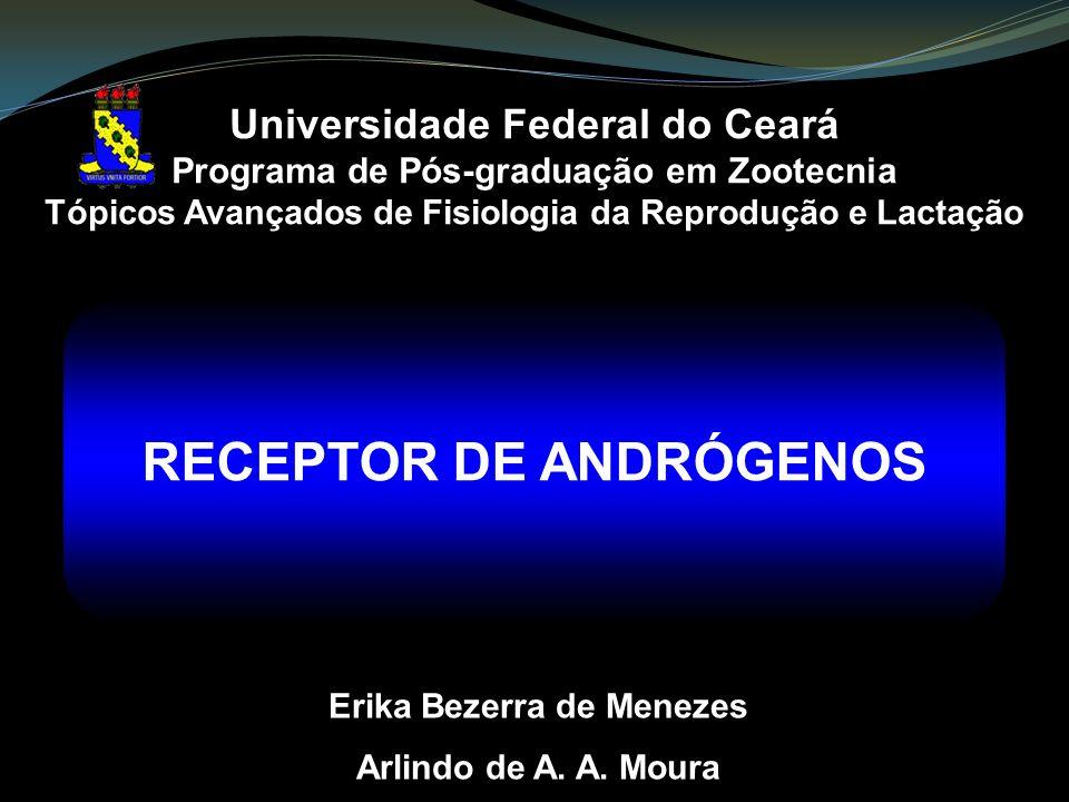 RECEPTOR DE ANDRÓGENOS Erika Bezerra de Menezes