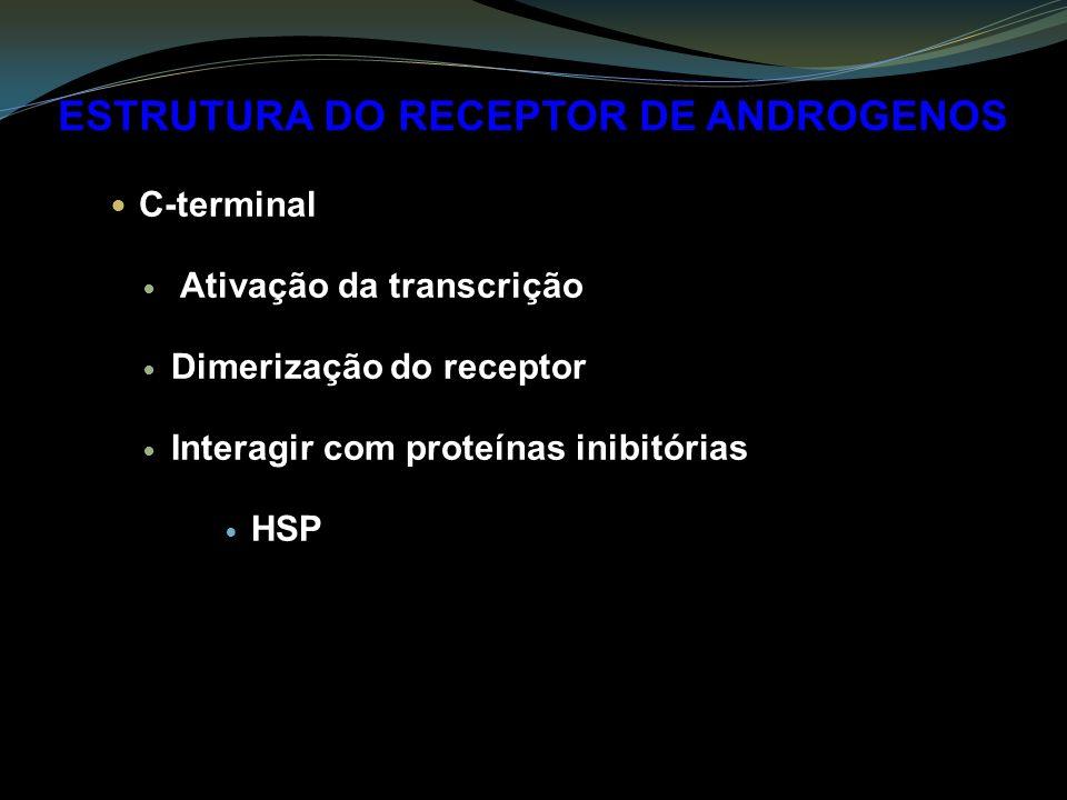 ESTRUTURA DO RECEPTOR DE ANDROGENOS