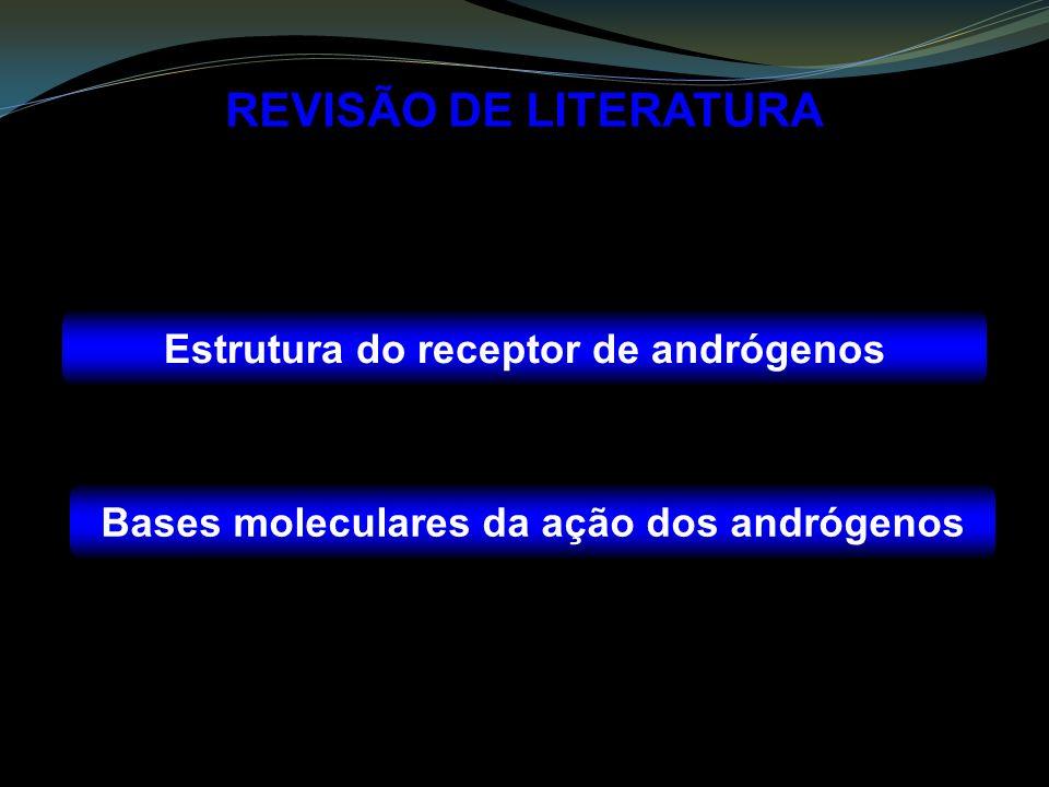 REVISÃO DE LITERATURA Estrutura do receptor de andrógenos