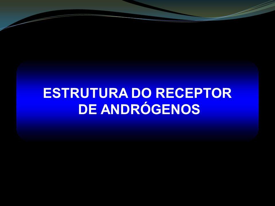 ESTRUTURA DO RECEPTOR DE ANDRÓGENOS