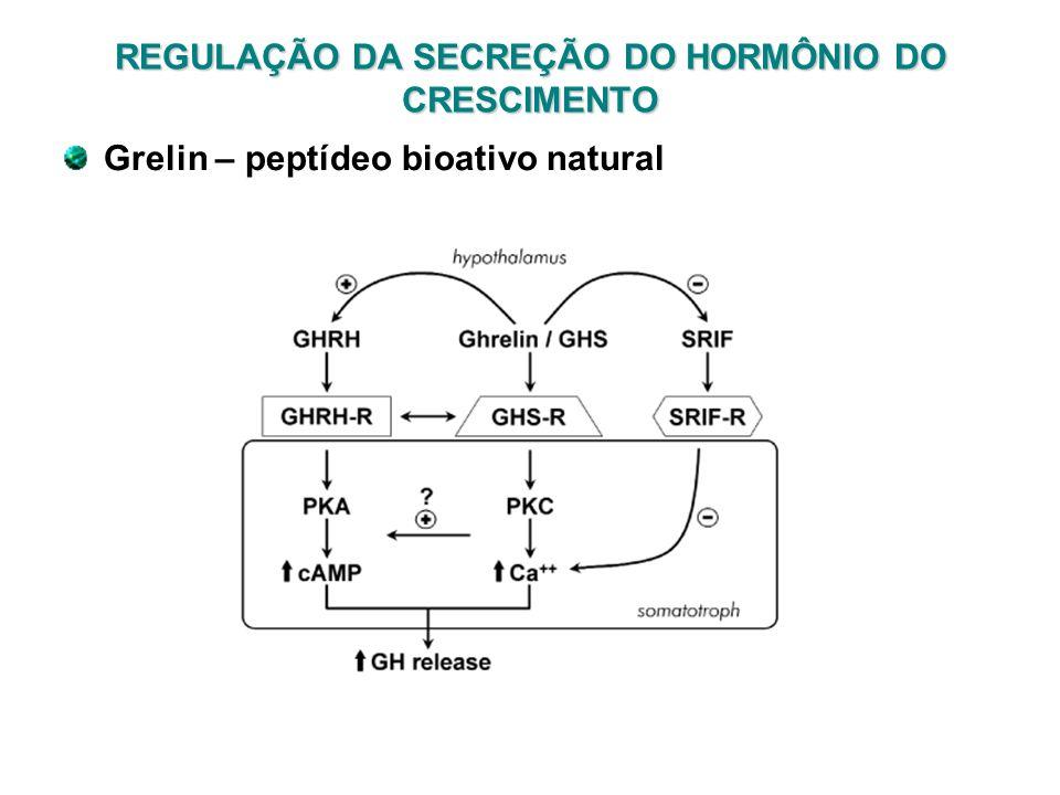 REGULAÇÃO DA SECREÇÃO DO HORMÔNIO DO CRESCIMENTO