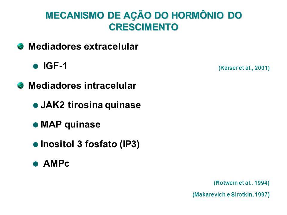 MECANISMO DE AÇÃO DO HORMÔNIO DO CRESCIMENTO