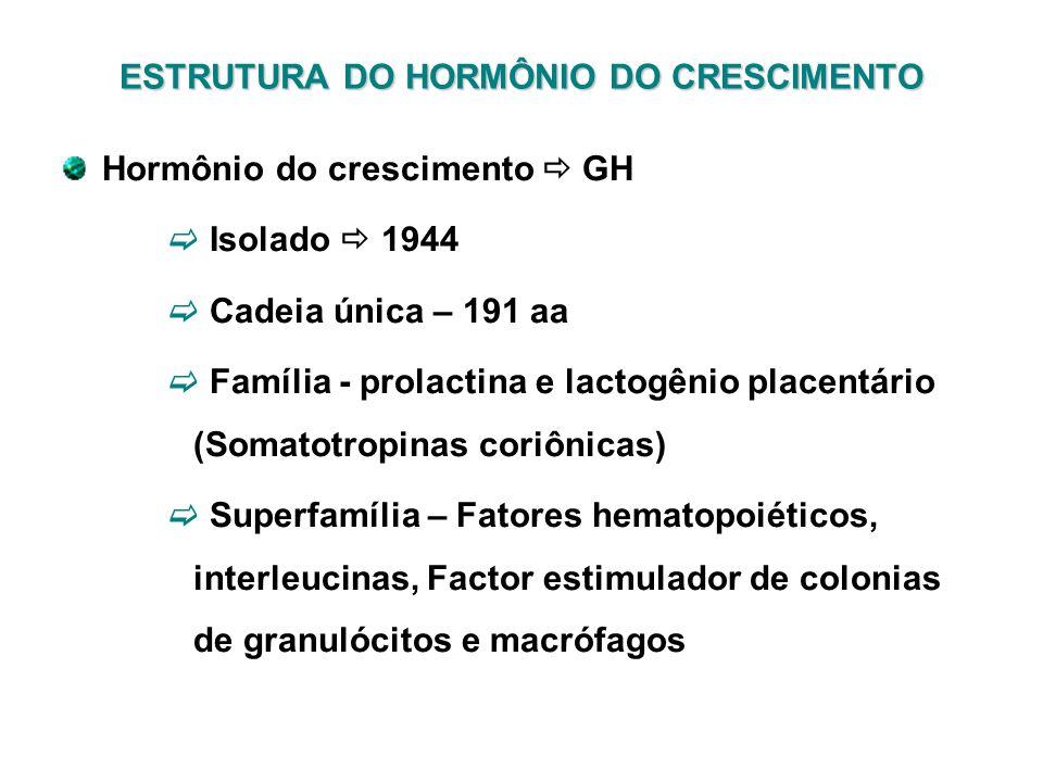 ESTRUTURA DO HORMÔNIO DO CRESCIMENTO