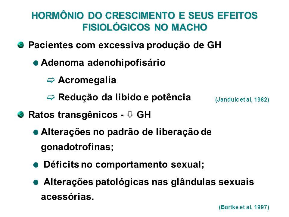HORMÔNIO DO CRESCIMENTO E SEUS EFEITOS FISIOLÓGICOS NO MACHO