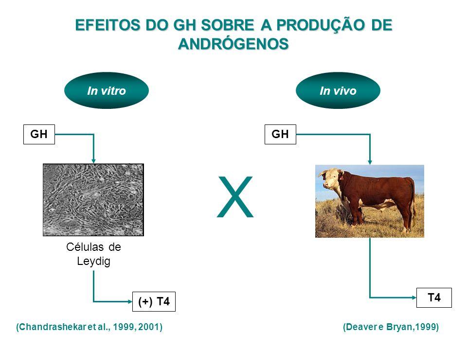 EFEITOS DO GH SOBRE A PRODUÇÃO DE ANDRÓGENOS