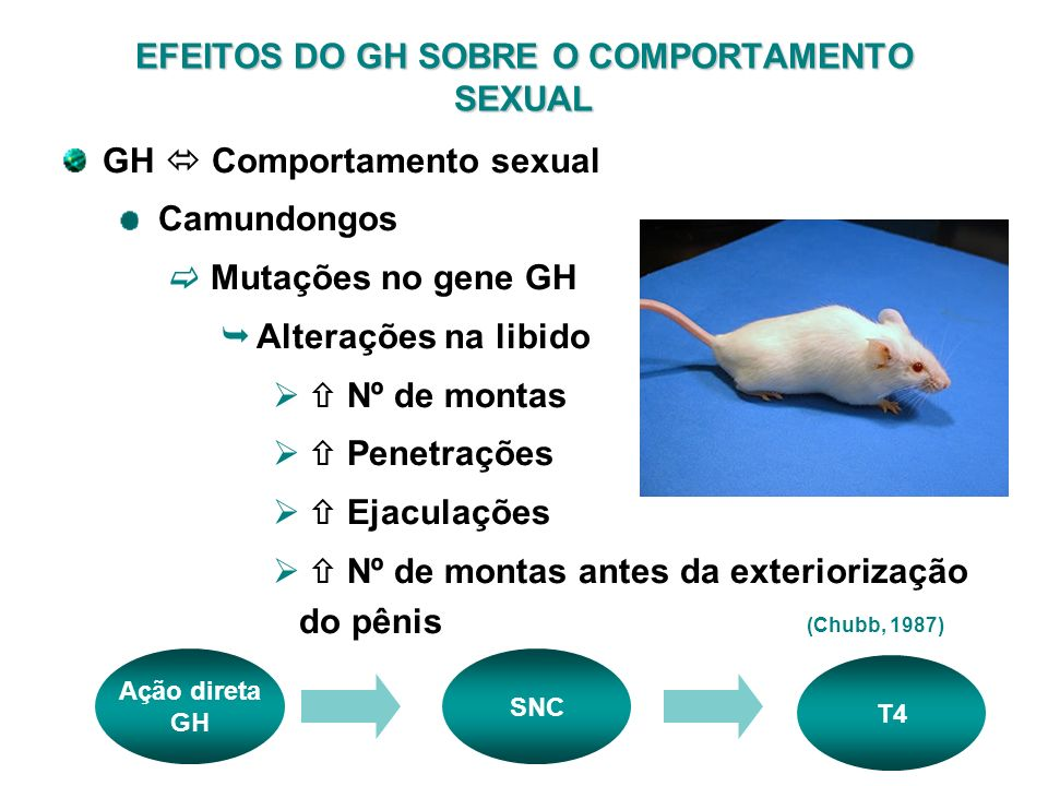 EFEITOS DO GH SOBRE O COMPORTAMENTO SEXUAL