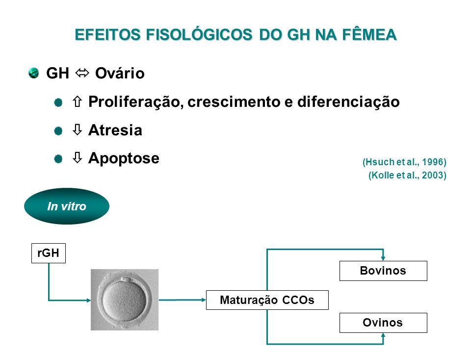 EFEITOS FISOLÓGICOS DO GH NA FÊMEA