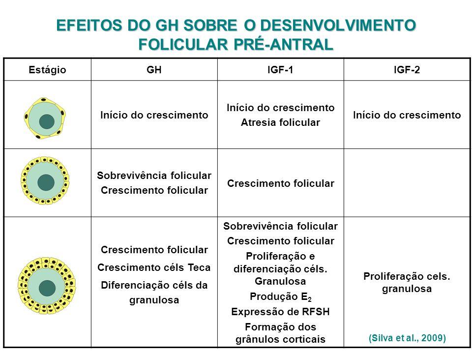 EFEITOS DO GH SOBRE O DESENVOLVIMENTO FOLICULAR PRÉ-ANTRAL