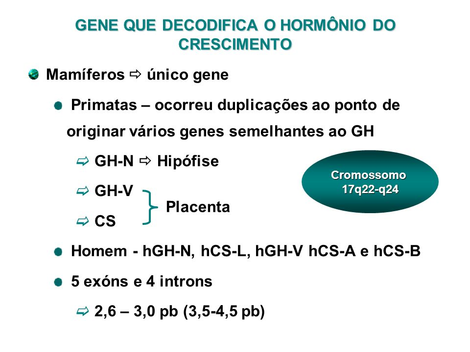 GENE QUE DECODIFICA O HORMÔNIO DO CRESCIMENTO