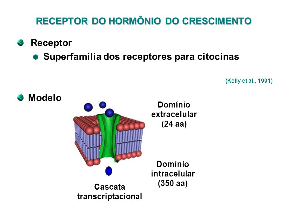 RECEPTOR DO HORMÔNIO DO CRESCIMENTO