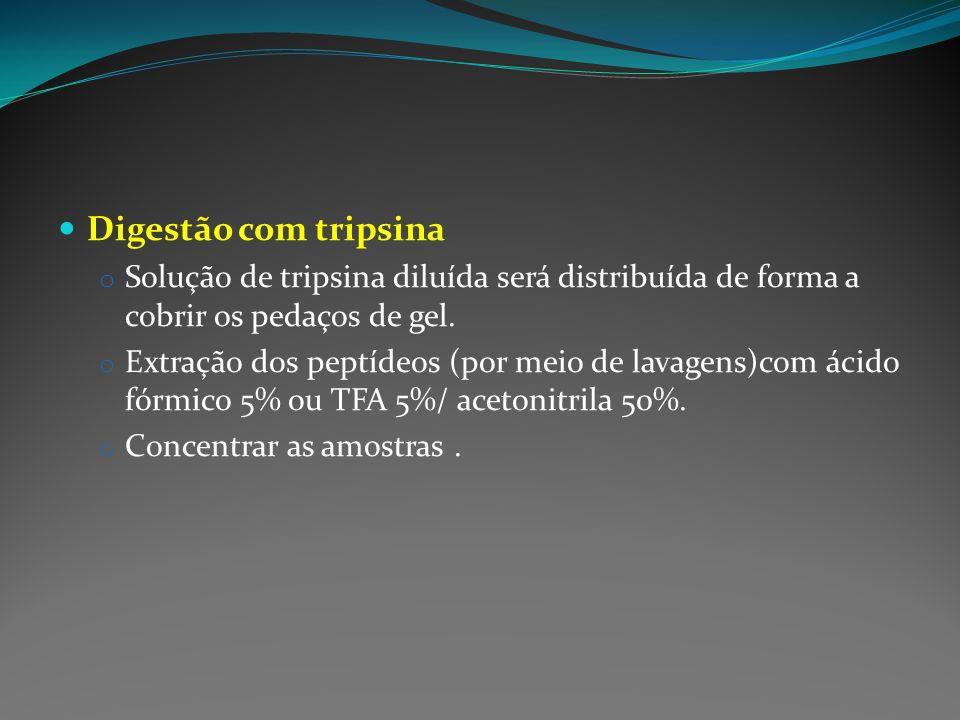 Digestão com tripsina Solução de tripsina diluída será distribuída de forma a cobrir os pedaços de gel.