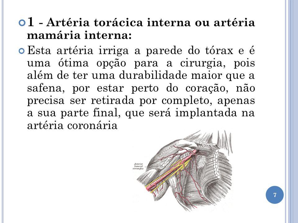 1 - Artéria torácica interna ou artéria mamária interna: