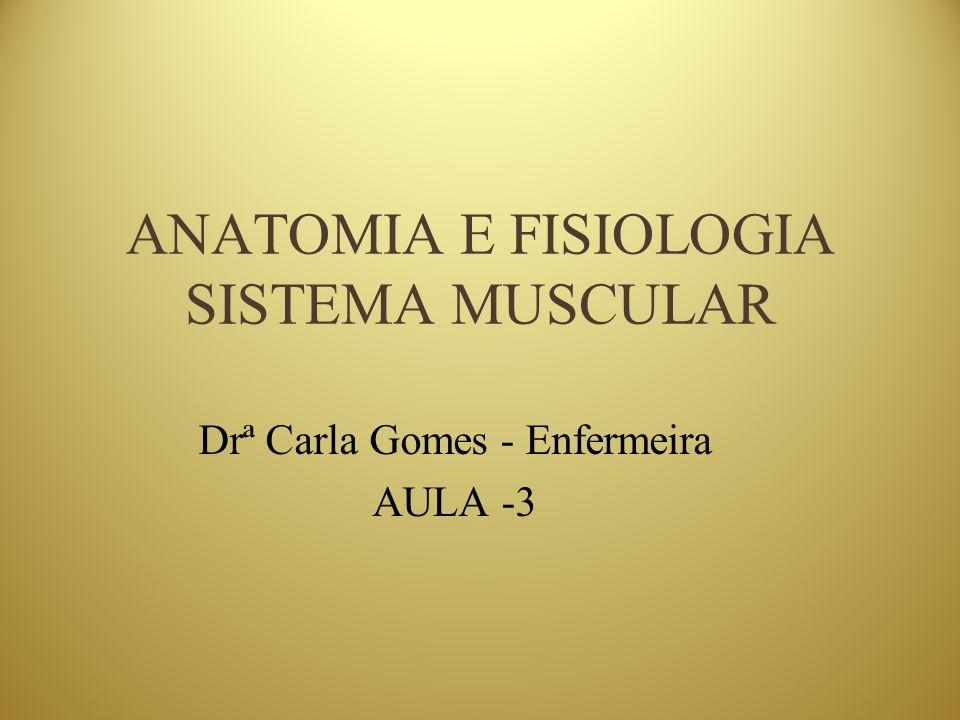 ANATOMIA E FISIOLOGIA SISTEMA MUSCULAR