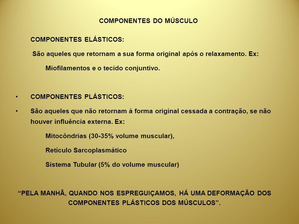 COMPONENTES DO MÚSCULO