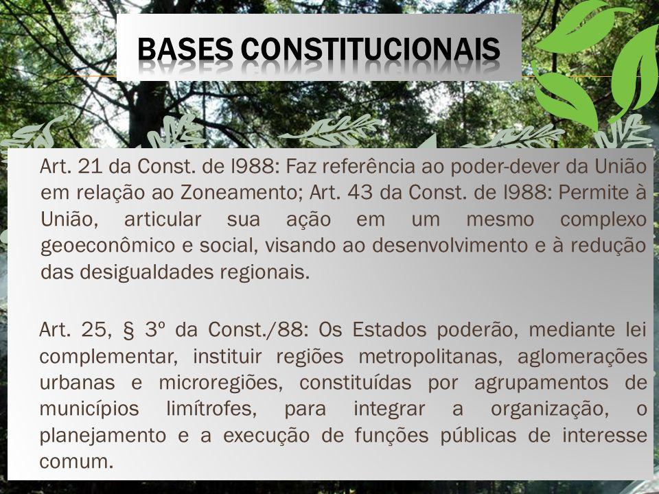 BASES CONSTITUCIONAIS