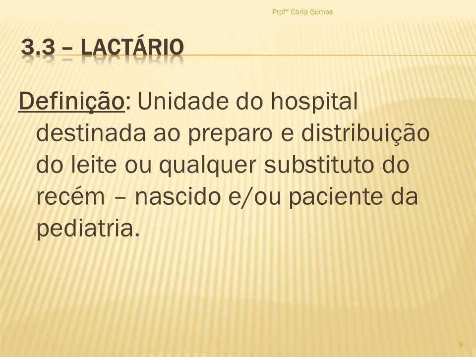 Profª Carla Gomes 3.3 – Lactário.