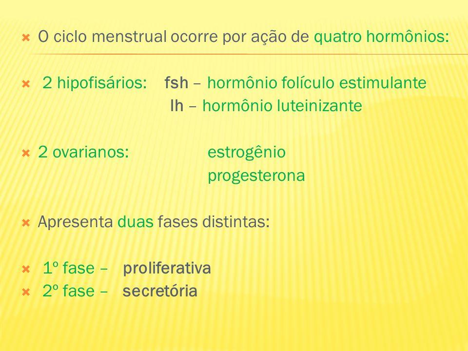 O ciclo menstrual ocorre por ação de quatro hormônios: